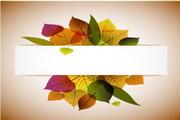 矢量创意叶子造型设计素材