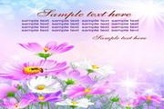 矢量唯美鲜花图