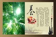茶文化主题画册PSD素材