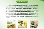 低碳生活画册PSD素材