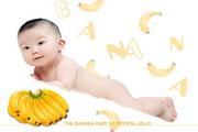 香蕉宝宝摄影PSD素材