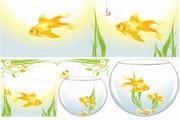 矢量金色金鱼观赏鱼素材