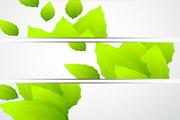 绿色主题banner矢量素材