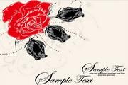 玫瑰花矢量文本背景图