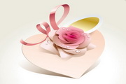 精美玫瑰花矢量图2