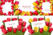 红黄花朵郁金香