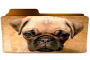 动物文件夹图标下载3