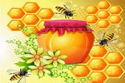 蜜蜂与蜂蜜矢量素材背景图