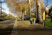 城市规划效果图源文件