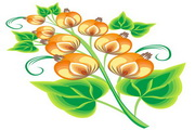 矢量花朵素材20