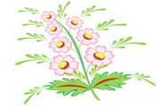 矢量花朵素材34