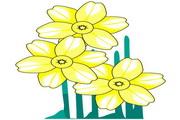 矢量花朵素材70