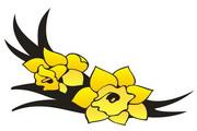 矢量花朵素材120