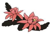 矢量花朵素材121