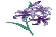 矢量花朵素材123