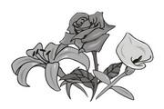 矢量花朵素材124