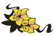 矢量花朵素材127