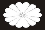 矢量黑白图案素材21