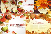 秋天的落叶 绿色版
