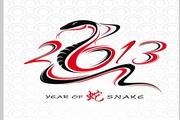 2013蛇形文字logo
