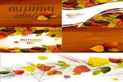 秋季落叶背景