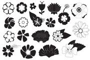 黑白花朵纹样