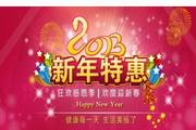 2013新年特惠感恩促销海报psd素材