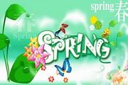 春季SPRING吊牌设计psd素材