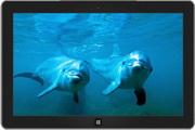 """""""海豚""""主题 绿色版"""