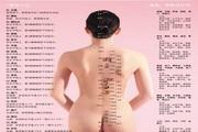 女性人体常用穴位背面图CDR素材