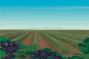 风景背景矢量素材116