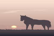 矢量夕阳风景素材5