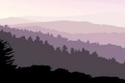 矢量夕阳风景素材36