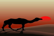 矢量夕阳风景素材44