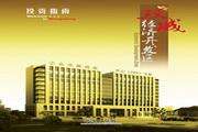 《双城市经济开发区》电子杂志 1.0