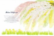 花色水彩花卉植物PSD素材