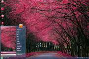 粉红小道电脑桌面 1.0