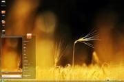 金黄麦穗电脑桌面 1.0