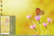 蝴蝶野花桌面主题 1.0