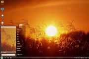夕阳下的稻穗win7主题 1.0