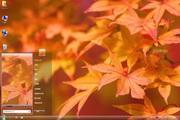 火红枫叶win7主题 1.0