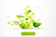 翠绿色树叶矢量图