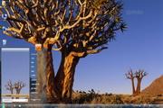 南非风景win7主题 1.0