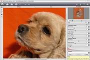AKVIS Noise Buster For Mac 9.0