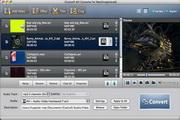 icoolsoft AVI Converter for Mac 5.0.8