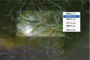 万能屏幕截图 1.1