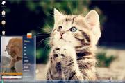 可爱的小猫win7主题