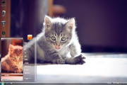 可爱猫咪win7主...