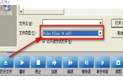 SV5/SV4监控视频播放器