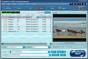 Aogsoft FLV to WMV Converter 3.3